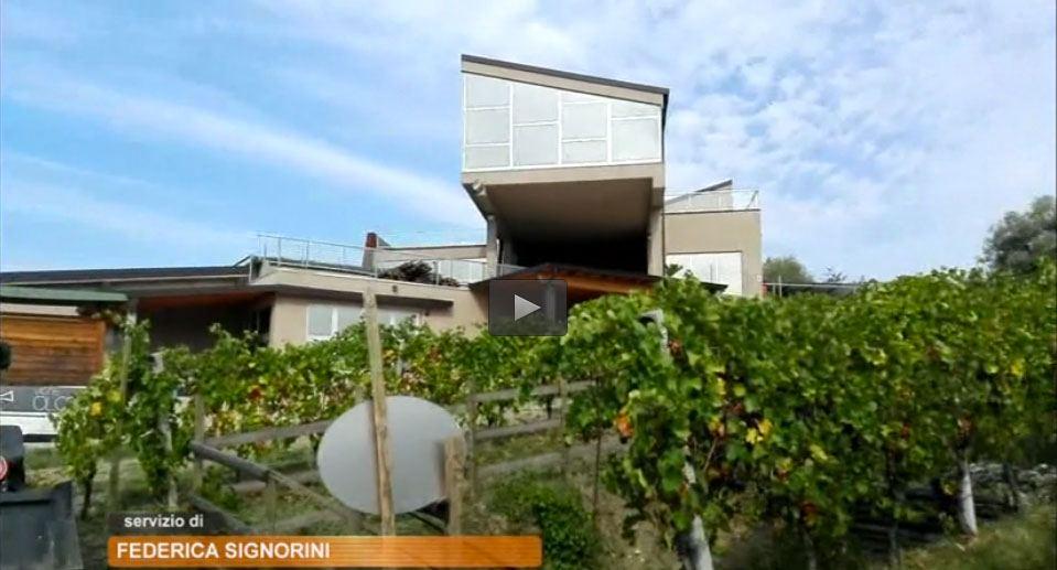 Scuola, il progetto sul vino del Ballerini di Seregno